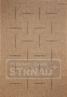Kusový koberec buklé Floorlux Coffee/black 20008